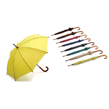 Carved Wooden Handle Umbrella