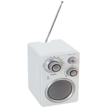 Haut-Parleurs Radio