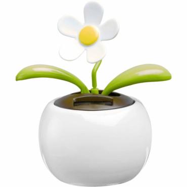 Flor carregamento solar